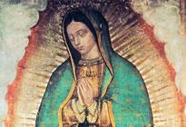 Quem é Nossa Senhora de Guadalupe?